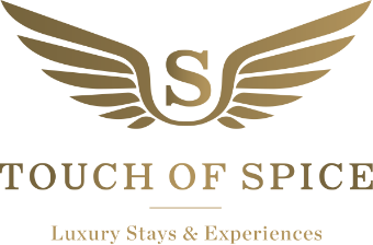 Touch of Spice logo