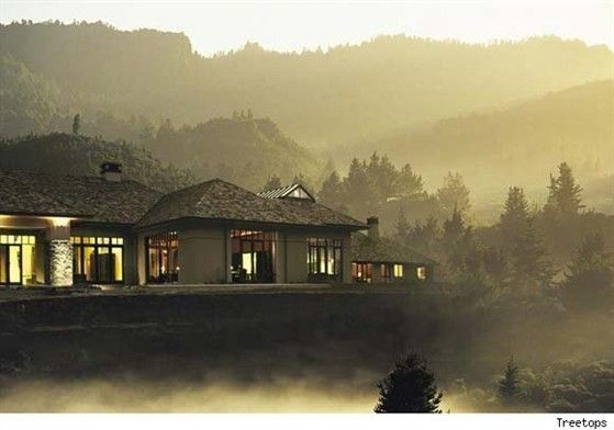 treetops-lodge-at-dawn.jpg